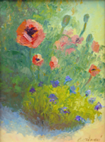 Peter's Poppies